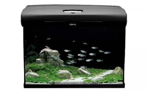 Bể cá mini Aquael BRILLUX BIO 60 Nhập Khẩu Từ Ba Lan