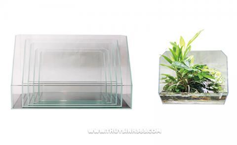 Bể cá mini bán cạn dạng khuyết góc Ista Ultra Glass Tank Paludarium