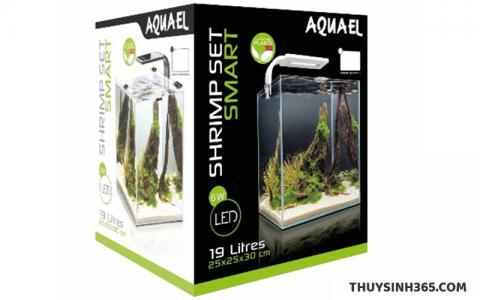 Bể cá mini kính siêu trong SHRIMP SET SMART chuyên dụng nuôi Tép