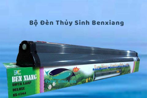 Bộ Đèn Thủy Sinh Benxiang T8 Bóng Jebo 10000k