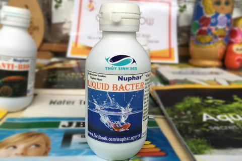 Nuphar Liquid Bacter dung dịch chống sốc nước cho cá