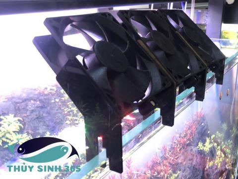 Quạt làm mát cho hồ thủy sinh DIY