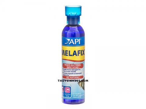 Thuốc trị thối vây, nấm, rách đôi, nhiễm khuẩn cho cá cảnh API Melafix